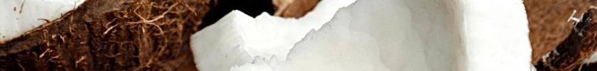 FLV Coconut