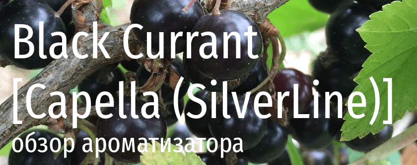 Обзор ароматизатора Capella Black Currant (Silver Line)