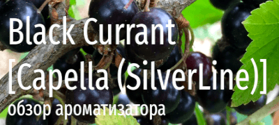 Ароматизатор Capella SL Black Currant