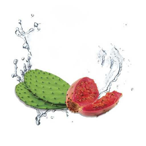 Обзор ароматизатора Deep Flavours Cactus