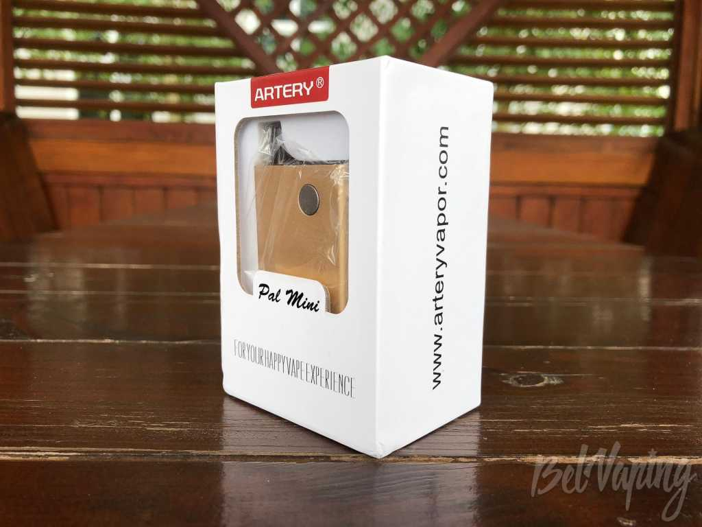 Обзор Artery PAL Mini Kit.Упаковка и комплектация Artery Pal Mini POD